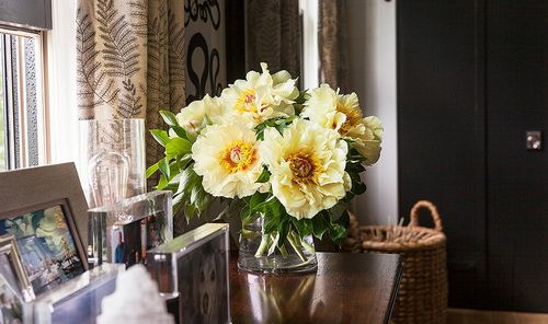 Gorgeous Arranging without all the Arranging flowers